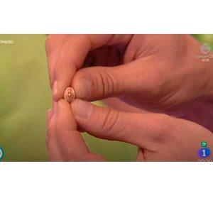 Reportaje TVE nuestras variedades de Alubias