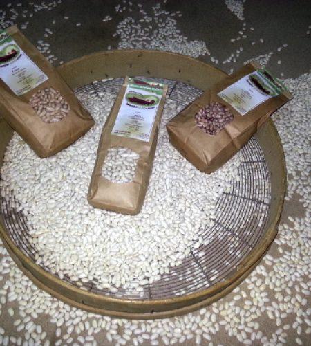 El producto final son los saquitos de 1 Kg de alubias que comercializamos. En esta foto se ven 3 de estas bolsas sobre una ceranda: el instrumento tradicional con el que se criban las legumbres.